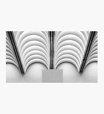 Museum Ceiling Photographic Print