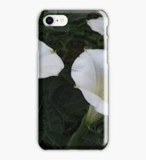 Three of a Jimsonweed Kind iPhone Case/Skin