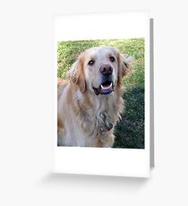 Gracie Girl Greeting Card
