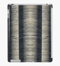 Columns Mirrored iPad Case/Skin