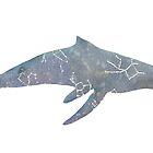 Whale Constellation by pokegirl93
