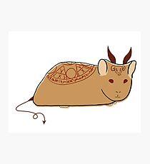 Demonic Hamster Photographic Print
