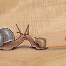 Snail Kiss (blue/yellow) by Fay Helfer