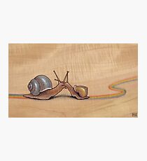 Snail Kiss (blue/yellow) Photographic Print