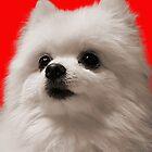 Gabe the Dog - Birthday by kryptolith