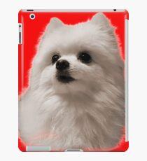 Gabe the Dog - Birthday iPad Case/Skin