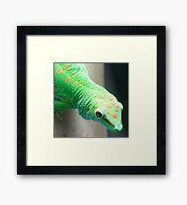 Gecko Relative Framed Print