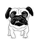 pug sketch by Matt Mawson