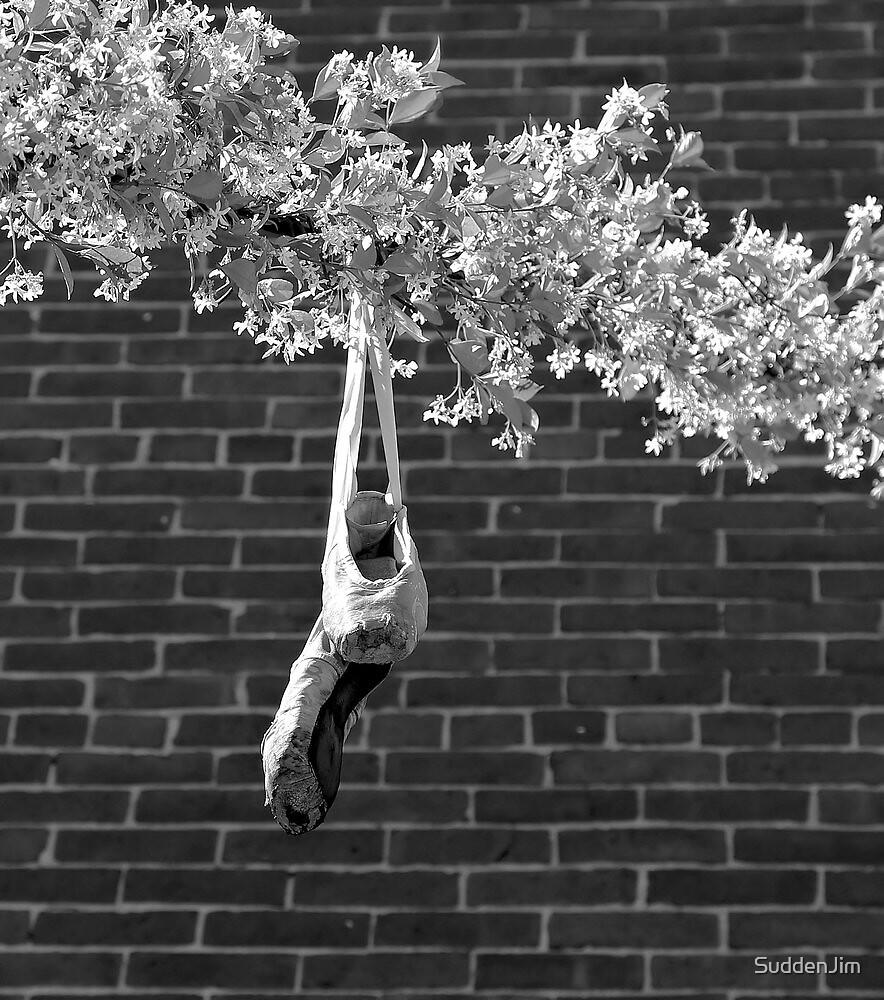 Ballet by SuddenJim