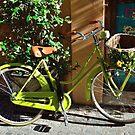 Green Cruiser by Chris King
