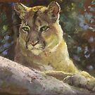 Mountain Lion by Lyn Green