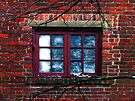 Window Obscura by RC deWinter