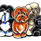 Four Havanese by offleashart
