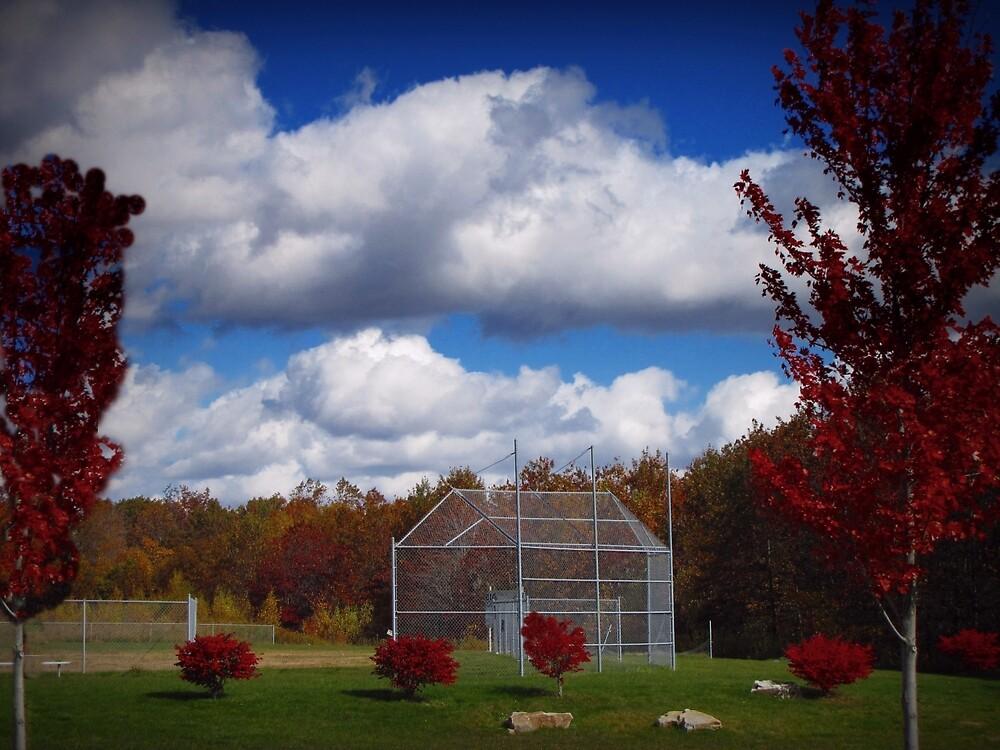 Field of Dreams by David Dehner