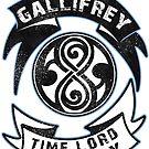Gallifrey academy by KanaHyde