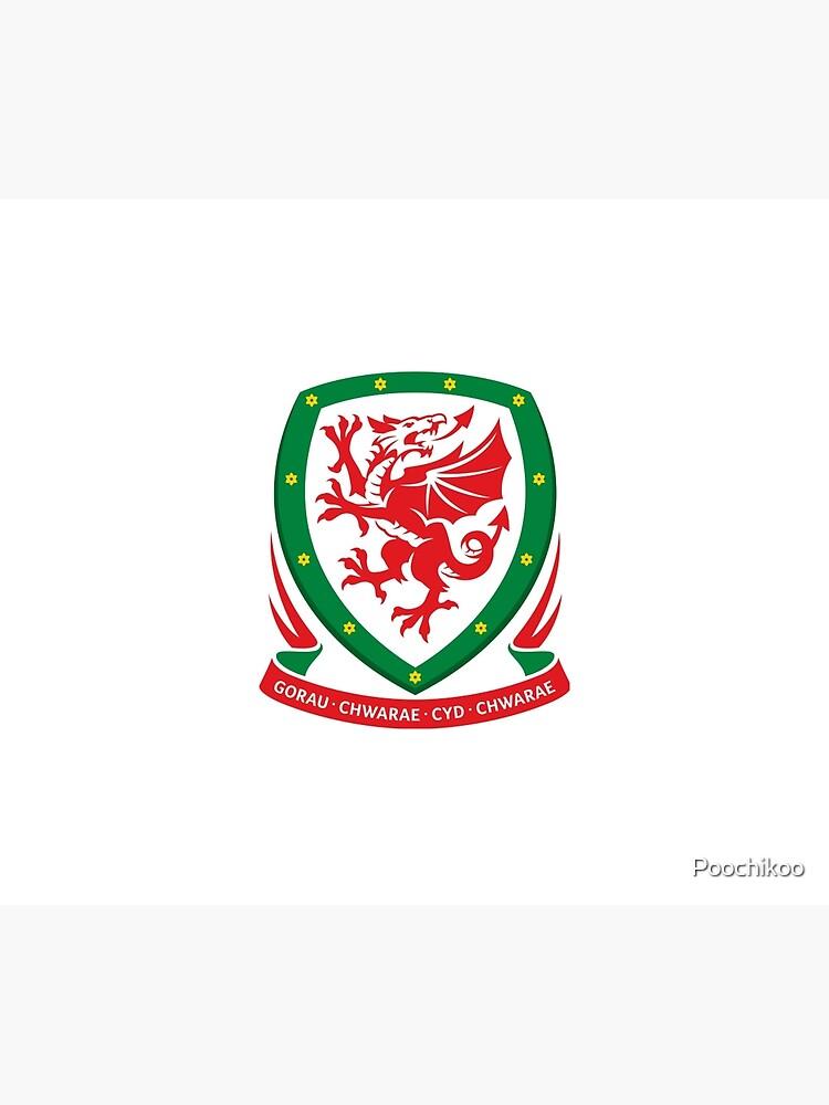 Euro 2016 Wales von Poochikoo