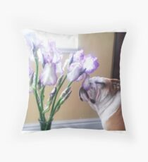 Bully Smelling the Flowers Throw Pillow