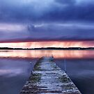 Purple rain by LadyFi