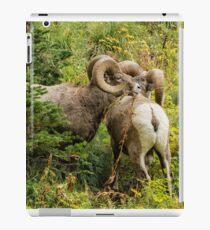 Two Rams iPad Case/Skin