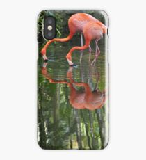 Flamingoes, As Is iPhone Case/Skin