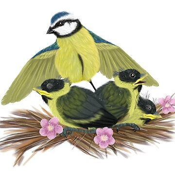 blue tit and her unusual children by placidplaguerat