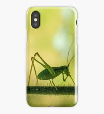 cricket in green  iPhone Case