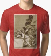 Francisco De Goya  - The Sleep Of Reason Produces Monsters. Bird painting: cute fowl, fly, wings, lucky, pets, wild life, animal, birds, little small, bird, nature Tri-blend T-Shirt