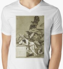 Francisco De Goya  - The Sleep Of Reason Produces Monsters. Bird painting: cute fowl, fly, wings, lucky, pets, wild life, animal, birds, little small, bird, nature Men's V-Neck T-Shirt