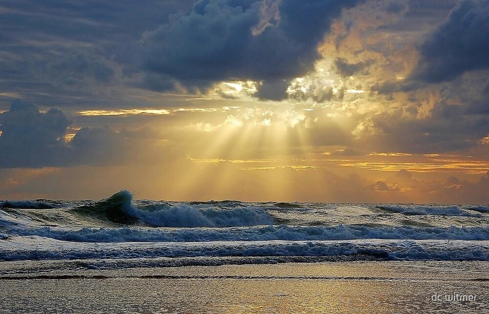 ocean beams by dc witmer