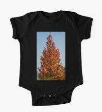57 fall color Kids Clothes