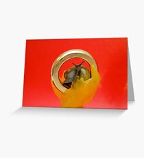 One Snail To Rule Them All Greeting Card