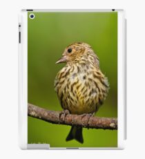 Pine Siskin With Yellow Coloration iPad Case/Skin