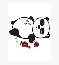 A panda who ate too many chocolates Photographic Print