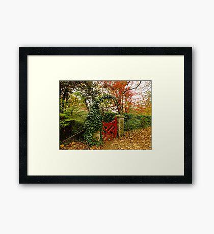 Red Gate of Bebeah, Mt Wilson Framed Print