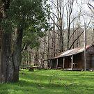 Cecil Piper's Hut by Alyssa Passlow