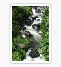 Whitewater River Sticker