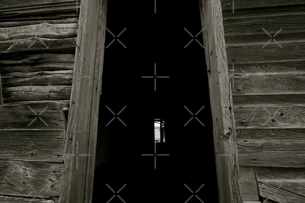 The Door and the Window  by Raquel Fletcher