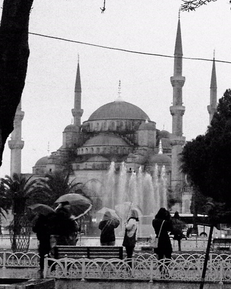 Blue Mosque by rebeccashapiro