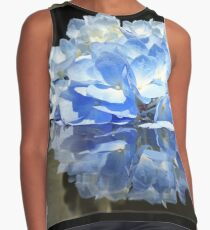 Reflection Contrast Tank