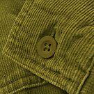 Green Corduroy 2 by Stephen Thomas