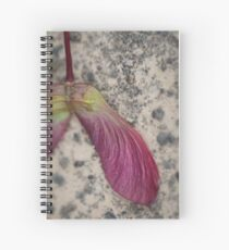 Maple Seed Spiral Notebook