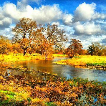 Royal river walk at Woking Palace by Joanna16