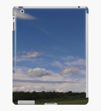 pretty as a picture iPad Case/Skin