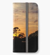 Fast Moving Clouds at Sunset iPhone Wallet/Case/Skin