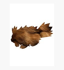Zigzagoon used Tail Whip Photographic Print