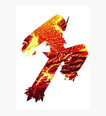 Blaziken used Blaze Kick Photographic Print