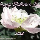 Happy Mother's Day;  La Mirada,  CA U.S.A. by leih2008