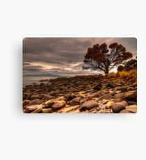 Coswell Beach Canvas Print