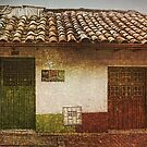 The House by Maria  Gonzalez
