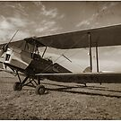 Vintage Plane by Shaun Colin Bell